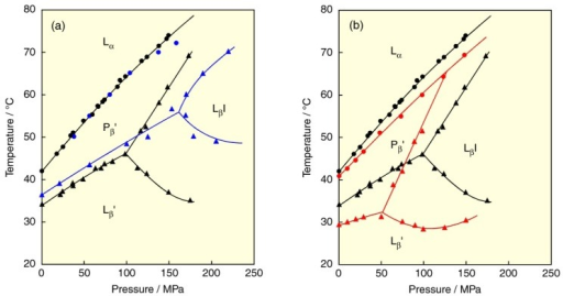 A Temperaturepressure Phase Diagrams Of Dppc Bilay Open I