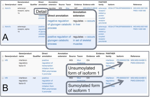 Sample search results from AmiGO2. (A) Shows two annotations of the same gene to both 'negative' and 'positive' regulation of glycogen catabolic process; the difference between the two lies in data entry on the 'Annotation Extension' column, showing that the experiments were performed in different tissues, i.e. liver and skeletal muscle. (B) Shows two annotations that only differ on whether the gene product 'does' or 'does not' positively regulate transcription initiation from an RNA polymerase II promoter. The data in the 'Isoform' column represents that the unsumoylated form 'does', whereas the sumoylated from 'does not'.