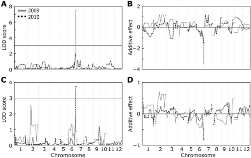 Genome scans for ozone-induced yield loss and the number of primary rachis branches.(A, C) QTL likelihood maps for (A) grain yield and (C) the number of primary rachis branches. Genetic maps were produced by composite interval mapping using differences between ambient air and elevated ozone. (B, D) Additive effect of (B) QTLs for grain yield and (D) the number of primary rachis branches. A positive (negative) additive effect in B and D represents an increasing allele from Sasanishiki (Habataki). The vertical dotted lines separate chromosomes 1–12 (labeled at the bottom) progressing left to right along the x-axis.