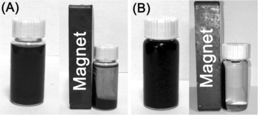 Photographs of the samples dispersed in ethanol before and after the separation by magnet. (A) 3Pt/1Fe3O4-MCNT, (B) 3Pt/5Fe3O4-MCNT.