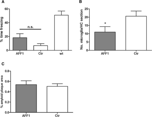 Vaccination at a progressed stage of disease improves memory function and reduces microgliosis but had no effect on the amyloid plaque load in the brain. a Tg2576 mice which were immunized with AFF1- (n = 9) and control (n = 9) vaccines at the age of 11 months, as well as wt littermates (n = 24) were exposed to a contextual fear conditioning test. b Average number of CD45high cells in the hippocampal region analyzed by immunohistochemistry. c The percentage of amyloid plaque area of the total brain sections. The bars represent the group means ± SEM of n animals. The unpaired two-tailed Student's t-test was used for statistical analysis, whereas in Fig. 7a, a Mann Whitney correction for non-parametric data was performed. A p value of ≤0.05 was considered to be statistically significant