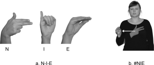 Fingerspelled versions of NIE 'no': N-I-E and #NIE.The individual in this figure has given written informed consent (as outlined in PLOS consent form) to publish these case details.