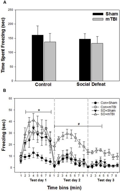 Freezing behavior from contextual fear conditioning testing beginning 7 days following stress and/or mTBI, including (A) response to footshock during fear conditioning acquisition day and (B) response to context during the three test days in 1 min time bins, each 8 min test separated by 24 h (as indicated by the gray dashed vertical lines).∗ Indicates significant difference from the control + sham group, while the symbol # indicates significant difference between the social defeat with mTBI vs. all other groups (p < 0.05).