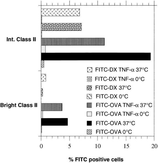 Antigen uptake (FITC-OVA and FITC-DX) by D1 bulk  population in the presence or absence of TNFα was analyzed by doublecolor FACS® analysis. The D1 cells that better internalize soluble antigens  at 37°C expressed comparatively low levels of MHC class II molecules,  whereas class IIbright were less efficient in both FITC-OVA and FITC-DX  uptake. Incubation of the cells with TNFα reduced the protein uptake of  the immature D1 subpopulation and had no effects on the mature D1  subpopulation.
