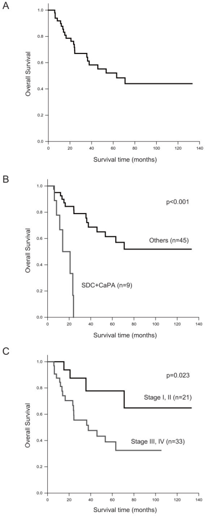Kaplan-Meier survival analysis of 54 cases with salivary gland carcinoma. Overall survival rate for: (A) total number of cases;(B) histological subtype of tumor comparing salivary duct carcinoma (SDC) and carcinoma ex pleomorphic adenoma (CaPA) with other types; and (C) each clinical stage.