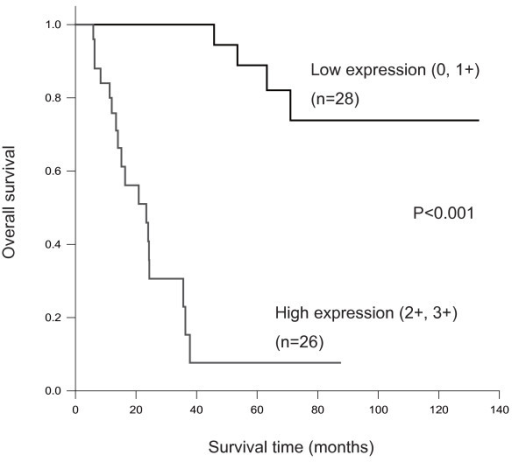 Kaplan-Meier survival analysis of 54 cases with salivary gland carcinoma by topoIIαgrotein expression level (low vs. high).