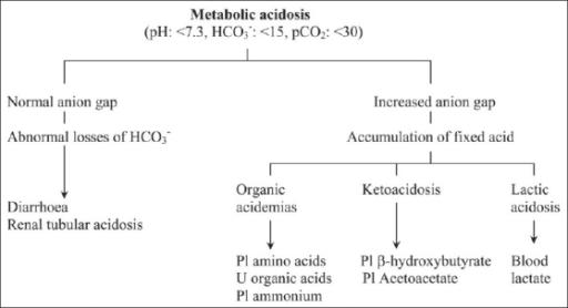 evaluation of metabolic acidosis | open-i, Skeleton