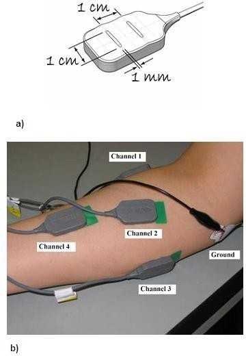 (a) Bipolar electrode design (Source: DELSYS) and (b) placement of four bipolar electrodes on the surface of the forearm.