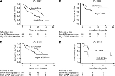 CIP2A expression and survival in tongue cancer patients. (A) Overall survival analysis according to the Kaplan–Meier method for cytoplasmic CIP2A immunoreactivity (logrank test, P=0.027). (B) Disease-specific overall survival analysis for cytoplasmic CIP2A immunoreactivity (logrank test, P=0.038). (C) Overall survival analysis stratified for patients with pT1 tumours (logrank test, P=0.124), and (D) pT2 tumours (logrank test, P=0.018).