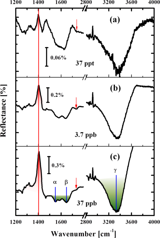 Detection of the presence of ionic mercury in environmental water.Spectral evolution shown as a function of Hg2+ concentration (added into water of Lake Kasumigaura). DNA-related signal is indicated by red peak and small red arrows. Green absorption feature shows the residual biomolecules in the lake water. Note that the scale of reflectance is different for each sub-graph.