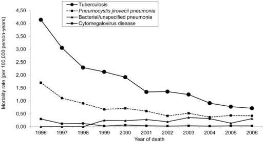 Mortality from opportunistic infections.Mortality rate (per 100,000 person-years and adjusted for age) for opportunistic infections as the underlying causes of death in people ≥ 13 years of age living with AIDS, by year of death. São Paulo, Brazil, 1996–2006.