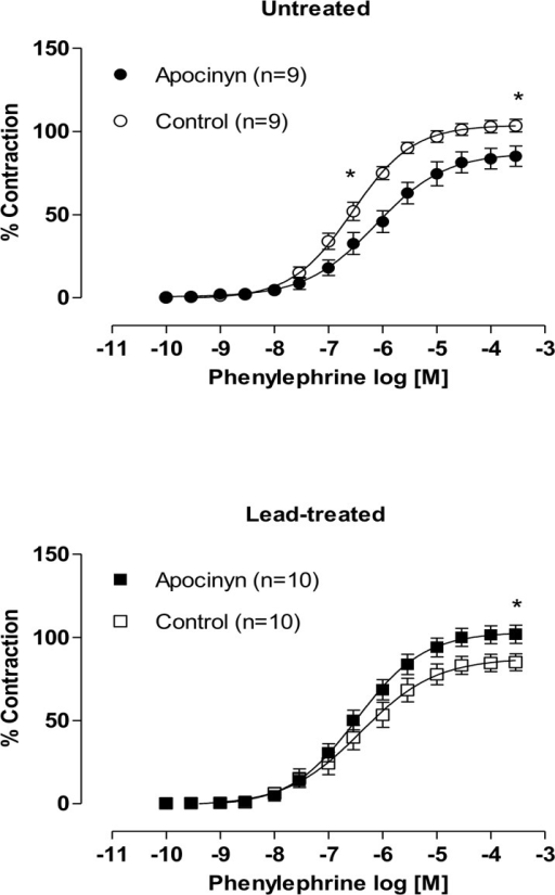 Effects of the apocynin in endothelium-intact aortic segments from both untreated and lead-treated rats.Effects of the specific NAD(P)H oxidase inhibitor, apocynin (0.3 mM), on the concentration-response curves of phenylephrine in endothelium-intact aortic segments from both untreated and lead-treated rats. Each point represents the mean ± SEM. *p < 0.05 versus the corresponding control by Student's t-test. The number of animals used is indicated in parentheses.