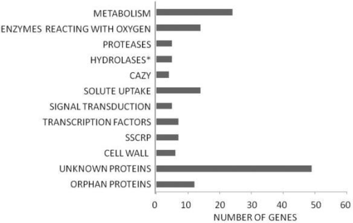 Inventory of gene groups that were not induced by sophorose but significantly down-regulated (at least > 5-fold; P < 0.05) in the Δkap8 strain compared with the retransformant. The gene groups encounter 152 from 163 down-regulated genes (for full description, see Supporting Information Table S6). Specification of gene groups is as described in the legend to Fig. 3. New groups include HYDROLASES, extracellular lipases, esterases and amidases; SIGNAL TRANSDUCTION, involved in signal transduction pathways; and CELL WALL, proteins being components of the fungal cell wall, glycosyltransferases involved in their biosynthesis.