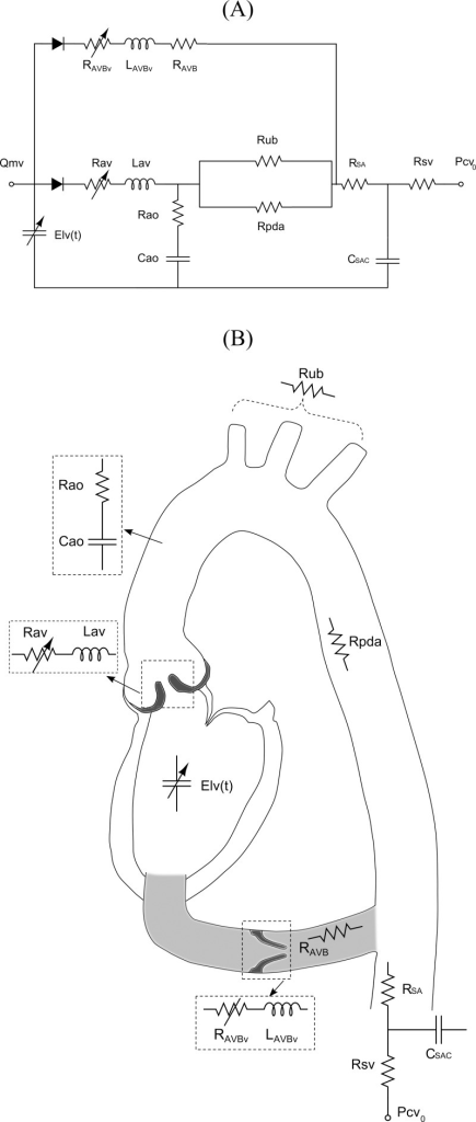 Schematic diagrams.(A) Electrical representation, (B) schematic representation of the lumped parameter model used to simulate left-sided heart in presence of aortic stenosis and/or apico-aortic conduit (please see Table 1 for all other parameters used in the lumped parameter model).