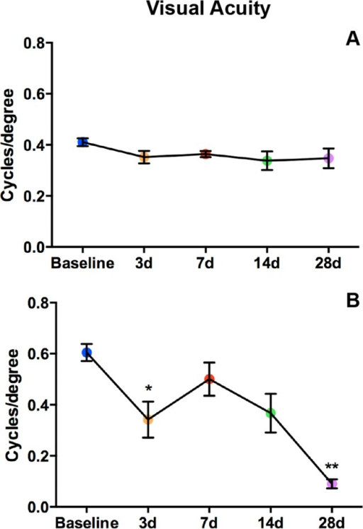 Visual acuity declines after blast in both strains.Graphs of OKN responses in Bl/6 (A) and D2 (B). The average cycles/degree ± SEM are plotted over time. *p<0.05, **p<0.01.