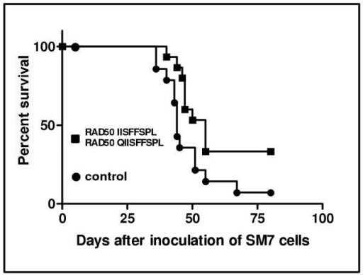 Survival of naïve and RAD23–31/ RAD24–31 vaccinated mice inoculated subcutaneously with 106 SM7 tumor cells. The curves represent the pooled data from two separate experiments with 15 mice per group. The curves are significantly different, p < 0.03. The mean survival time for controls and vaccinated mice was 44 and 55 days respectively.