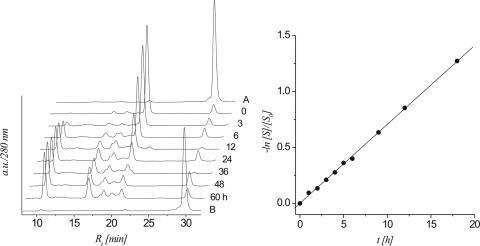 left: HPLC traces (280 nm) of the β-elimination reaction of the 2′-OMe heptamer 5b at different time intervals; controls: trace A: protected heptamer 5a; trace B: protected 5a after treatment with 0.1 M NaOH for 48 h at 37°C; right: linear fit (R2 > 0.999) of ln[S]/[S0] versus t calculated from the HPLC traces.