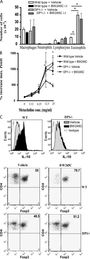 The antiinflammatory effect of BW245C is dependent on DP1 receptor expression on BM-derived cells. WT BM chimeras and DP1 knockout mice BM chimeras were sensitized and challenged as in Fig. 1. (A) BAL fluid differential counts. (B) Airway obstruction to increasing doses of inhaled metacholine was measured as increase in PenH values (% increase from saline) 24 h after the last antigen exposure. (C) CD4+CD25+ T cells from MLNs of WT or DP1 knockout mice BM chimeras were stained intracellularly for the presence of IL-10. The percentage of Foxp3+ cells in CD4+CD25+ T cells was determined by flow cytometry. Data are shown as mean ± SEM. *, P < 0.05. n = 8 mice per group. conc., concentration.