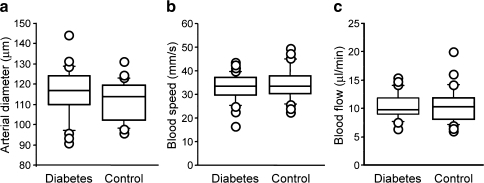 Retinal haemodynamic parameters in type 1 diabetic individuals and matched non-diabetic controls. The box plots present the data for the 27 diabetic and 26 control participants in whom the measurements could be performed at the major superior temporal artery. Each box plot shows the 10th, 25th, 50th (median), 75th and 90th percentiles of the indicated parameter. Values above the 90th and below the 10th percentile are plotted as points