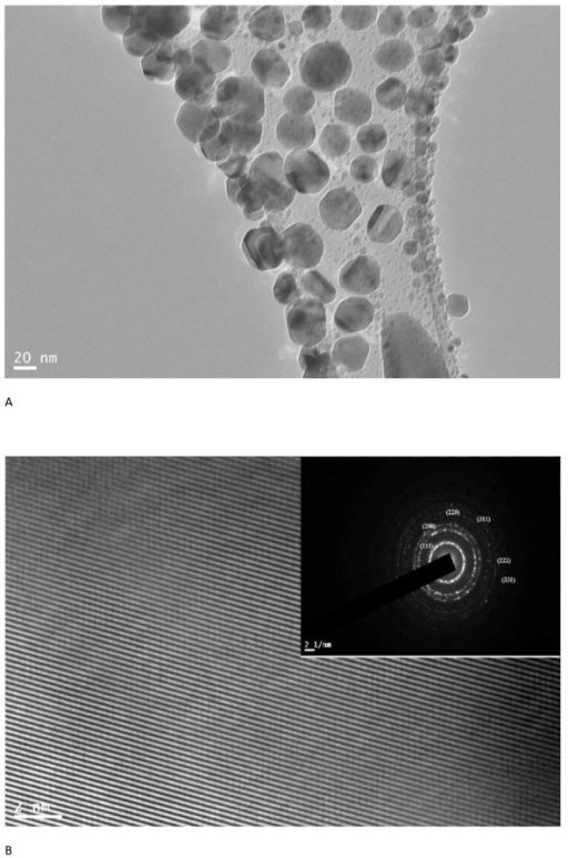 FETEM and HRTEM images of silver nanoparticles. (a) FETEM image of silver nanoparticles. (b) High-resolution image of a single silver nanoparticle and inset shows SAED pattern for the same.