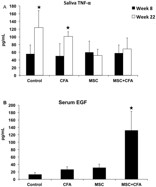 Measurements of TNFα and EGF concentrations in saliva and serum.Upper panel (A), as expected, the level of TNFα in saliva was significantly higher (*P<0.05) in non-treated NOD mice at week 22 (established Sjögren's-like disease) when compared to week 8 (before disease onset). At the end of the experimentation period (week 22), treated MSC and MSC+CFA mice had two times less TNFα levels than non-treated NOD (*P<0.05). Lower panel (B), concentrations of serum EGF was significantly higher in MSC+CFA group versus control, CFA, and MSC groups (n = 4 to 8 mice per group; P<0.05).