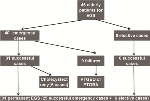 Outcome of 46 elderly patients with acute cholecystitis received EGS.EGS, endoscopic gallbladder stenting; PTGBD, percutaneous transhepaticgallbladder drainage; PTGBA, percutaneous transhepatic gallbladderaspiration