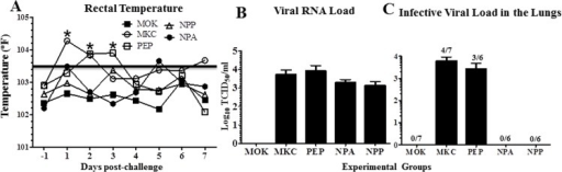 Clinical outcome and virus load in the lungs of vaccinated and SwIV challenged pigs.(A) Rectal temperature was recorded everyday post-challenge (day -1 to 7). SwIV titer in BAL fluid at DPC 7 was detected by (B) viral RNA load by qRT-PCR, and (C) replicating infectious virus load using MDCK cells by immunofluorescence assay. The ratio indicated above each bar represents the number of pigs positive for virus and contributed to the data out of 6 or 7 animals. The viral titer is expressed in tissue culture infective dose 50 (TCID50) in each ml of the BAL fluid. Each data point or bar represents the average value of 6 to 7 pigs ± SEM. Asterisk denotes statistically significant difference at P<0.05 (*) between MKC and NPP or NPA pig groups determined by One way ANOVA followed by Tukey Post-hoc test.