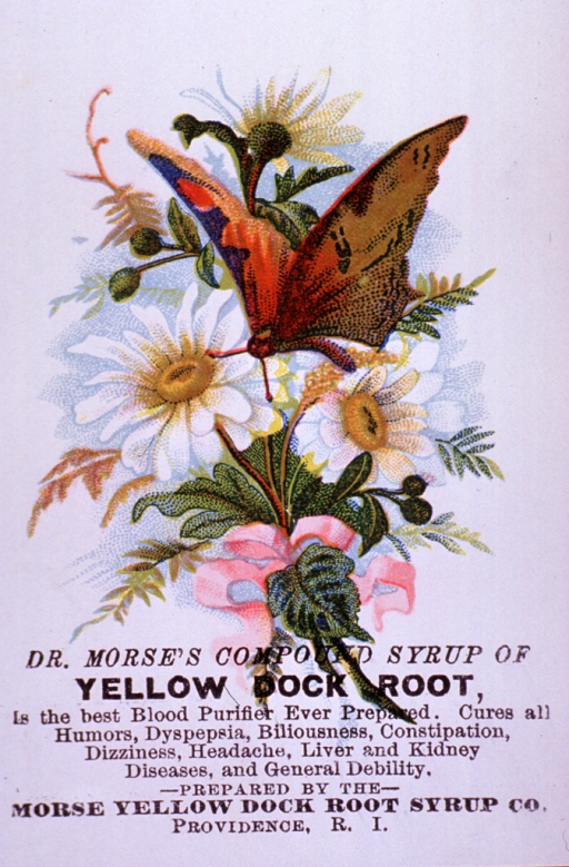 <p>Advertising card for Yellow Dock Root Syrup, a blood purifier, which can be used to cure various ailments and general debility.  Visual motif:  Floral arrangement with butterfly.</p>