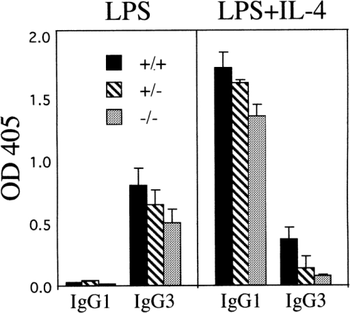 IgG expression by Msh2-deficient B cells in vitro. Small  dense splenic B cells derived from pools of cells obtained from three mice  of each genotype were cultured for 4.5 d with either LPS (25 μg/ml) or  LPS (25 μg/ml) and recombinant murine IL-4 (50 ng/ml), and supernatants were harvested. Levels of total IgG3 and IgG1 in these supernatants  were then determined by ELISA, as described in Materials and Methods.  All assays were performed in triplicate, and error bars are shown.