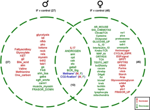 Pathway Changes In The Gonads Of Male And Female Rats M