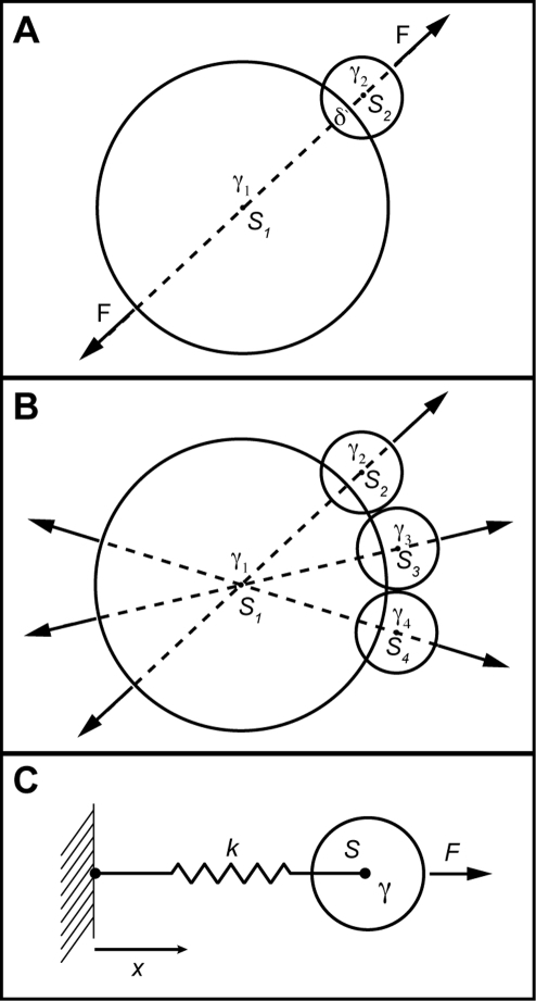 Colliding spheres demonstrate PAIRS method stability and failures.In A, calculation of the force F required to separate two spheres in an actual pairwise interaction (i.e. no other forces besides F are present) yields a stable collision resolution that can be accomplished in a single time-step, if desired. In B, the sum of the forces on , from collisions with the three other spheres, can lead to an overshoot, and non-convergent oscillations for some geometries. To avoid this failure, the PAIRS forces should be applied fractionally, such that collisions are resolved over multiple time-steps. C shows sphere  with drag  attached to a fixed wall by spring . For an applied external force  the equilibrium position is  (assuming the spring is unstrained at x = 0) and the system should relax from that equilibrium, once the force is removed, with time-constant . Modeling this simplest dynamic system by the PAIRS method involved replacing the spring force with a force calculated to return the system to its relaxed position in a single time-step. That force is then modulated by a PAIRS coefficient to allow tuning of the system to match physical properties of the system, such as expected deflection and relaxation time-constant.