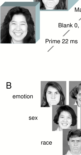 (A) Illustration of the display sequences in Experiment								1. In the mask classification task participants indicated as rapidly								as possible either the emotion (angry, happy), the race (Asian,								Caucasian) or the sex (female, male) of the mask face. In the prime								classification task, participants made these same judgments of the								prime face as accurately as possible. (B) Examples of								the faces used in Experiment 1.