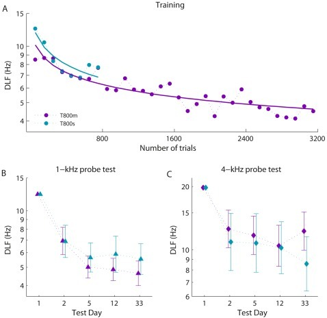 Comparison of single and multi-session training for learning, retention and transfer of learning.(A) Group mean thresholds for training. Solid lines are least squares logarithmic fits. Error bars were omitted for clarity as they overlapped at each point. Note that the pre-test (where groups were initially matched) is not included in this figure or in fitting the learning curves (B) Pre-, post- and retention tests at the trained frequency (1 kHz), adjusted for individual differences in pre-test performance at 1 kHz. (C) Pre-, post- and retention tests at the untrained frequency (4 kHz), adjusted for individual differences in pre-test performance at 4 kHz. Error bars in panels B and C show ±SEM.