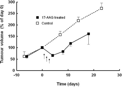 Effect of 17-AAG on tumour volume of MMTV-NEU-NT tumours in transgenic mice: Mice were treated with 17-AAG (40mg/kg, days 1-3) with subsequent regrowth (■), vehicle treated controls (□). Tumour volume is expressed as % of volume at day 0. Data are presented as mean ± SEM (n = 4).