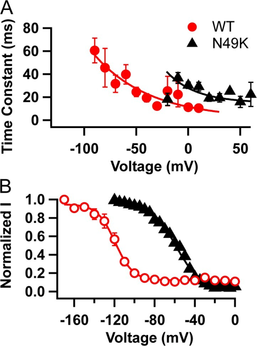 Comparison of inactivation properties of NavAb WT and NavAb/N49K. (A) Time constant of the decay of current during depolarizations to the indicated potentials for NavAb WT (red circles) and NavAb/N49K (black triangles). (B) Voltage dependence of inactivation for NavAb WT (red circles) and NavAb/N49K (black triangles) by depolarizations to −10 mV after 100-ms long conditioning prepulses to the indicated potentials.