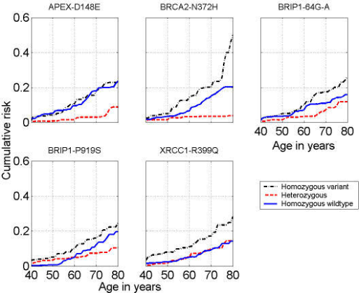 Nonessential amino acid metabolism in breast cancer