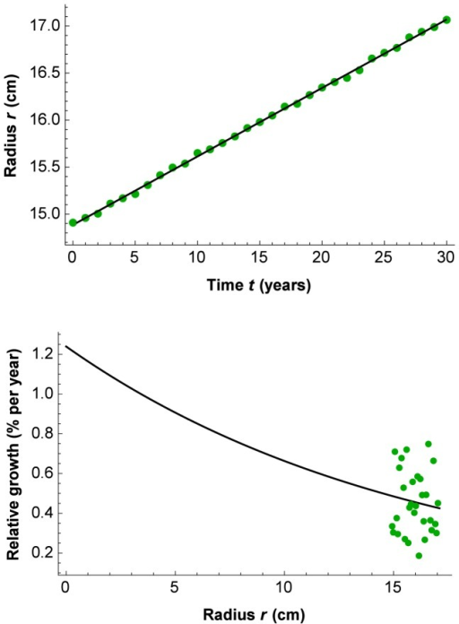 Growth of tree #52 from the Chichinautzin site.Above: Regression line  from nonlinear regression with (1) and fixed  cm−1 to find  = 1.24% per year and radius  = 15.98 cm at time  = 15 years (1989; R2 = 0.9998). Below: Initial relative growth (here  = 1.24% per year) represents a standardized measure for comparing relative growth (dr/dt)/r, even though the data points may be at different radiuses: The mean growth path is projected backward to a radius infinitesimally close to zero; when b<0, b determines the change of relative growth with increasing radius as a negative exponential function (Relative growth  = A·Exp[b·r]). Note that the graph does not show an extrapolation, but a standardized characterization of relative growth at the Y-intercept.