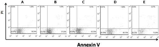 Examples of dot plots showing apoptosis of CD4+ T cells in vitro.CD4+ T cells cultured with different concentrations of resveratrol. (A): CD4+ T cells cultured with 0 µM resveratrol. (B): CD4+ T cells cultured with 10 µM resveratrol. (C): CD4+ T cells cultured with 20 µM resveratrol. (D): CD4+ T cells cultured with 40 µM resveratrol. (E) CD4+ T cells cultured with 80 µM resveratrol.