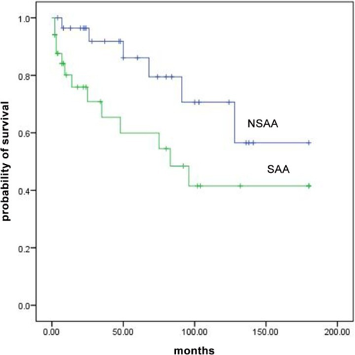 Overall survival curves for patients with SAA and NSAA