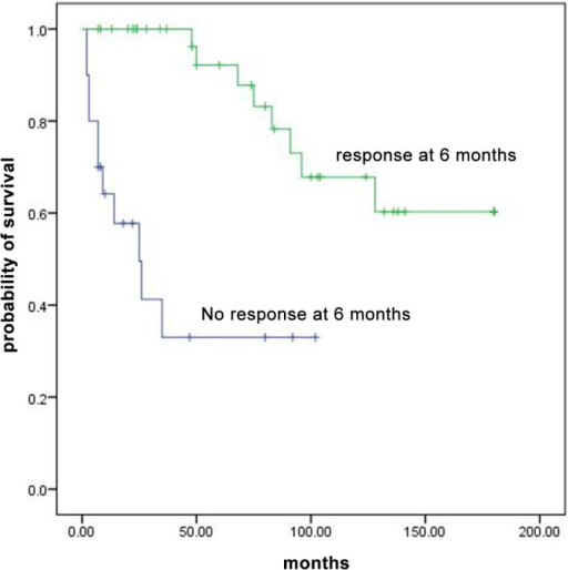 Overall survival curves for patients with AA who responded at 6 months and non responders.