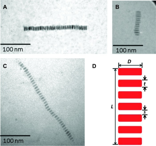 TEM images of (A) semiconductor CdSe, (B) magnetic Fe3O4, and (C) ferroelectric BaTiO3 nanonecklaces.(D) Schematic illustration of an individual nanonecklace showing dimensions: the diameter (D) and thickness (t) of a nanodisc, the spacing (s) between adjacent nanodiscs, and the total length (L) of a nanonecklace. The PS chains that intimately and permanently capped on the necklace surface, and the PEO stem that connected all nanodiscs are omitted for clarity in (D).