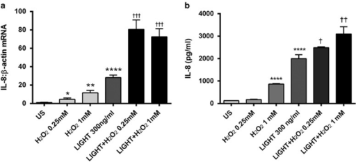 Impact of LIGHT (homologous to lymphotoxin, exhibits inducible expression, and competes with HSV glycoprotein D for herpes virus entry mediator (HVEM), a receptor expressed by T lymphocytes) on the expression of interleukin-8 (IL-8) in Huh7 (human hepatoma cell line) hepatocytes in the presence of H2O2. Huh7 hepatocytes were stimulated with recombinant human LIGHT (300 ng/ml) with or without coincubation with two different concentrations of H2O2. The panels show mRNA levels in cell lysates (a), as assessed by real-time reverse transcription-PCR (RT-PCR), in relation to the control gene β-actin, and (b) protein levels in cell supernatants, as assessed by enzyme immunoassay, of IL-8 after 5 and 18 h stimulation, respectively. Data are given as mean±s.e.m., n=8. *P<0.05, **P<0.01, and ****P<0.0001 vs. US (unstimulated). †P<0.05, ††P<0.01, and †††P<0.001 vs. LIGHT when given alone.