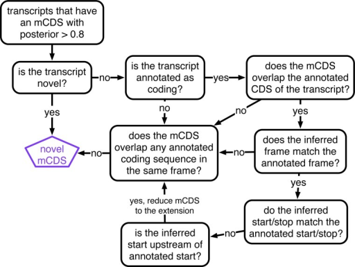 Decision rules to identify novel mCDS.Illustrating the decisions that identify novel mCDS. The mCDS that do not overlap any known CDS (pooling GENCODE, UCSC and CCDS annotations) are labeled as novel mCDS -- these include mCDS from both novel and annotated transcripts.DOI:http://dx.doi.org/10.7554/eLife.13328.011