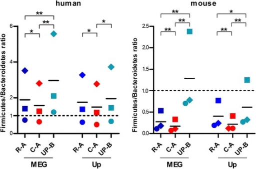 Firmicutes/Bacteroidetes ratio in human and mouse subjects measured using different databases. Results obtained with human (N = 3, left) and mouse (N = 3, right) samples, with each dot representing a single sample. DBs were made up of reads (dark blue, R-A) or contigs (red, C-A) from gut metagenomes of all subjects analyzed for each host species, or all bacterial sequences deposited in UniProt (turquoise, UP-B). The annotation tools used were MEGAN (MEG) and Unipept (Up). *p < 0.05; **p < 0.01; ***p < 0.001 (paired t test)