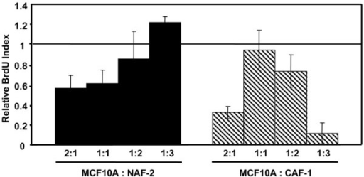 Relative 5-bromo-2'-deoxyuridine (BrdU) indices of MCF10A cells in co-culture with varying quantities of normal breast-associated fibroblast NAF-2 and carcinoma-associated fibroblast CAF-1. With increasing numbers of NAF-2, the mean rate of proliferation of co-cultured MCF10A cells increased, with a significant difference in BrdU-labeling index observed between a ratio of epithelial cells to fibroblasts (E:F) of 2:1 versus an E:F of 1:3 (P < 0.05). With increasing numbers of CAF-1, the mean rate of proliferation was highest at an E:F of 1:1. The rate of proliferation at an E:F of 1:1 was significantly higher than that at an E:F of 2:1 (P < 0.05). At an E:F of 1:3, CAF-1 caused a decreased proliferation of and enhanced cell death of MCF10A cells.