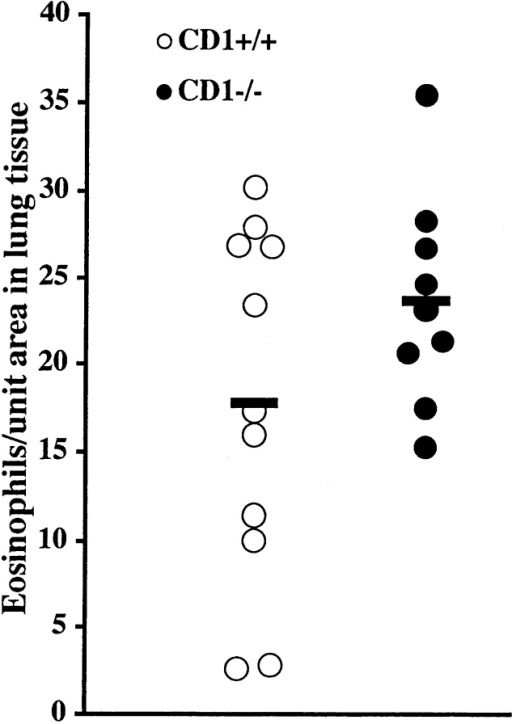 CD1d1 (CD1−/−)  mutant mice and wild-type controls (CD1+/+) were immunized  on day 0 and challenged daily  with aerosolized OVA on days  14–20. The number of eosinophils in lung tissue was similar in  both groups of mice. Solid bars,  mean (n = 9–11 per group).