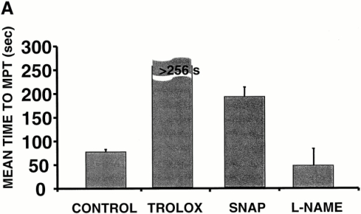 Scavenging the ROS trigger or exposure to exogenous NO inhibits the MPT. Cells loaded with 125 nM TMRM and confocal line-scan–imaged at 2 Hz. (A) Mean time to MPT induction in control versus pretreated cells as indicated: Trolox (2 mM); SNAP (100 μM); L-NAME (1 mM). Data represent the average from 8–10 cells in each group. (B) Evidence of endogenous production of NO by mitochondria after MPT induction and inhibition by L-NAME (4 mM). Myocytes were loaded with 125 nM TMRM (red) and 10 mM DAF-2 (green) and line scanned at 100 Hz.