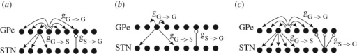 (a) Sparse random network. Each STN neuron excites a single random GPe cell, and each GPe neuron inhibits three random STN cells. GPe cells inhibit each other through all-to-all coupling. (b) Sparse structured network. Although more structured than the random sparse network of (a), it is designed to avoid direct reciprocal connections between STN and GPe cells. Each STN neuron excites the single closest GPe cell, and each GPe neuron inhibits two STN cells, skipping the three closest. GPe cells inhibit two immediate neighbouring GPe cells. (c) Tightly connected structured network. Each STN neuron excites three closest GPe cells, and each GPe neuron inhibits the five closest STN cells. GPe cells inhibit each other through all-to-all coupling. Spatially periodic boundary conditions are applied (the network wraps around on itself). (Adapted from Terman et al. (2002).)