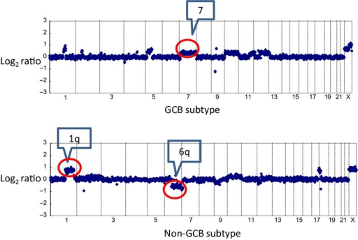 Representative array CGH profile of germinal center B-cell-like (GCB) and non-GCB diffuse large B cell lymphomas. Log2 ratios for all clones were plotted based on their chromosome position, with the vertical dotted bars representing the separation of chromosomes. Clones are ordered from chromosome 1 to 22 followed by X. The upper figure shows gain of 7q in a case of GCB diffuse large B-cell lymphoma (DLBCL). The lower figure shows a gain of 1q and a loss of 6q in a case of non-GCB DLBCL.