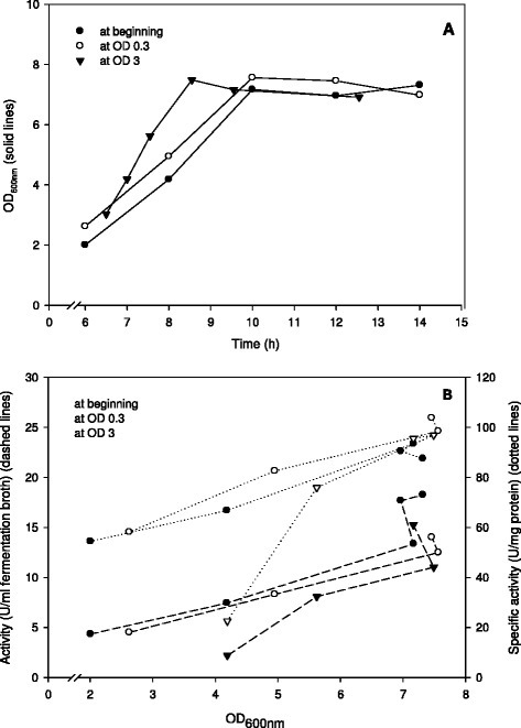 Effect of pH control on the growth (A) and enzyme production (B) ofL. plantarumoverexpressing β-galactosidase fromL. reuteri.L. plantarum WCFS1 harbouring pEH9R was cultivated in 400-ml laboratory fermentors at 37°C using MRS medium with 20 g/l glucose and pH control at pH 6.5. Expression of β-galactosidase was induced by adding 20 ng/ml pheromone at different OD600: immediately after inoculation, at OD600 of 0.3 or at OD600 of 3.0. All data points represent the average value from 2 independent experiments.
